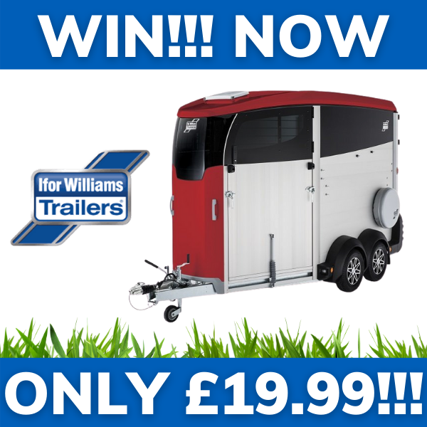 WIN!!! - IFOR WILLIAMS HBX 506 HORSE TRAILER (Buy one get one free!)