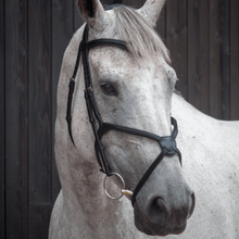 Load image into Gallery viewer, WIN!!! - HENRY JAMES ANATOMICAL Bridle & Reins Worth £225 RRP