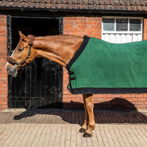 WIN!!! - FREE SWISH FLEECE SHOW RUG of your choice!!!