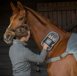 WIN!!! - EQUILIBRIUM PRODUCTS MASSAGE PAD AND MASSAGE MITT WORTH £450 RRP!