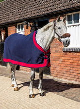 Load image into Gallery viewer, WIN!!! - FREE SWISH FLEECE SHOW RUG of your choice!!!