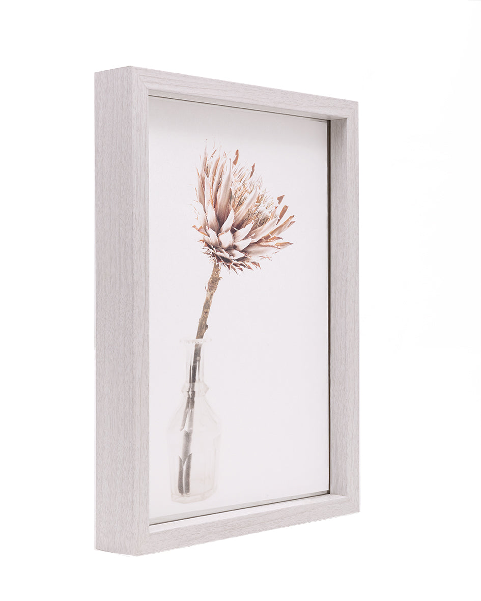 Framed fine art print ROOTING - transformation