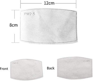 PM2.5 Activated Carbon Filter Insert Replaceable Anti Haze Filter