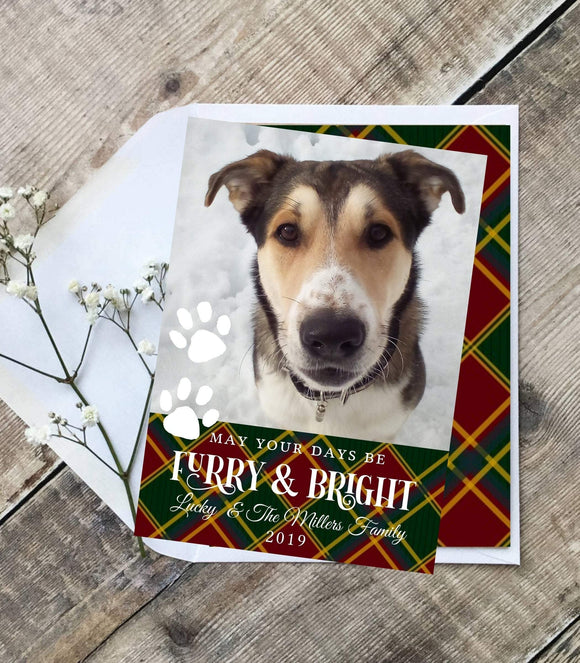 Dog Photo Christmas Card Template, Holiday Photo Card, Furry and bright, - You Can Print