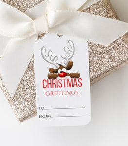 Holiday tag Digital Christmas Tag Christmas Gift Tag Printable Christmas Tag DIY, GT - You Can Print