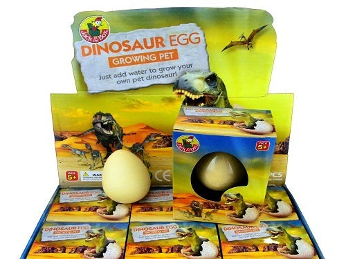 Growing Pet Dinosaur Egg