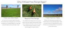 Load image into Gallery viewer, Hilltops Farm Free Range Eggs