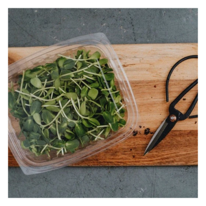 Load image into Gallery viewer, Organic Sunflower Shoots - Fresh Village Farms