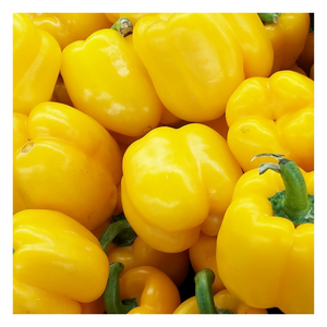 Organic Yellow Bell Peppers | 1LB - Fresh Village Farms