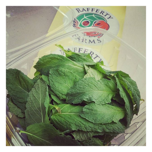 Load image into Gallery viewer, Organic Fresh Mint | 100 Grams - Fresh Village Farms