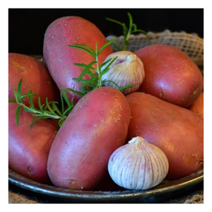 Organic Red Potatoes - Regular - Fresh Village Farms