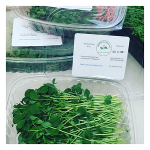 Microgreen - Speckled Peas - Fresh Village Farms