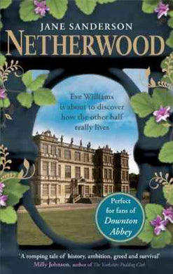 Netherwood (Eve Williams, #1)- 99bookscart-secondhand-bookstore-near-me