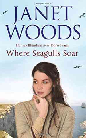 Where Seagulls Soar- 99bookscart-secondhand-bookstore-near-me