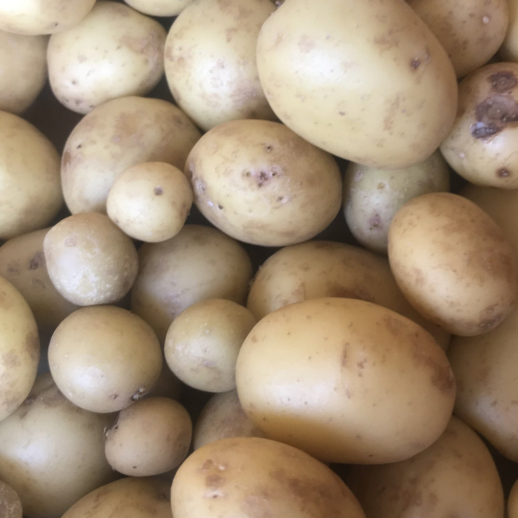 Washed New Potatoes 500g