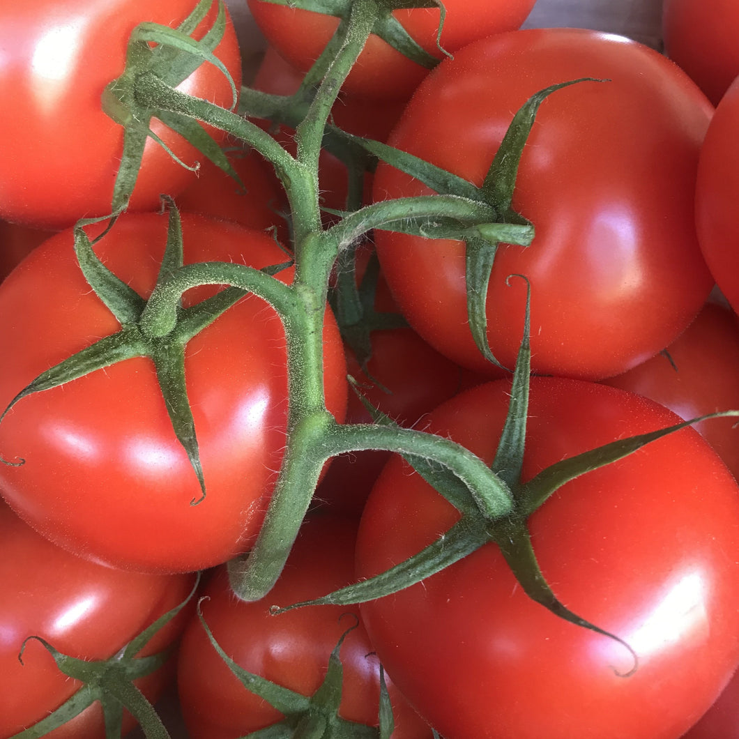 Large Vine Tomatoes 500g
