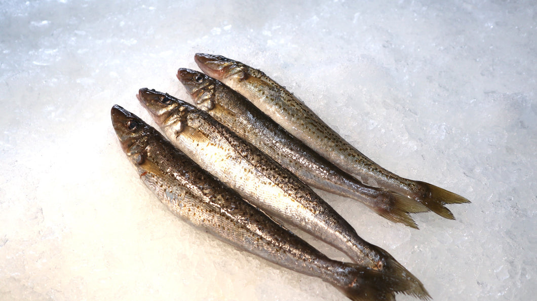 WHOLE KING GEORGE WHITING
