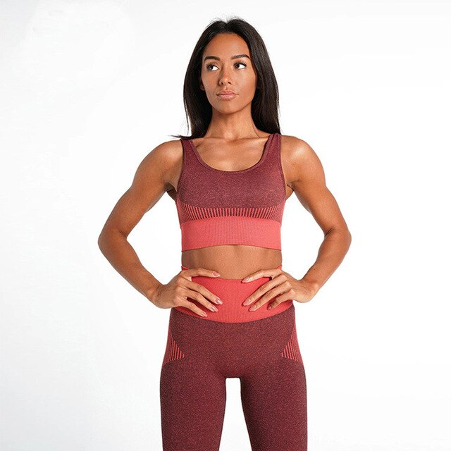 Seamless Yoga Set Fitness Clothing-FitnessLab