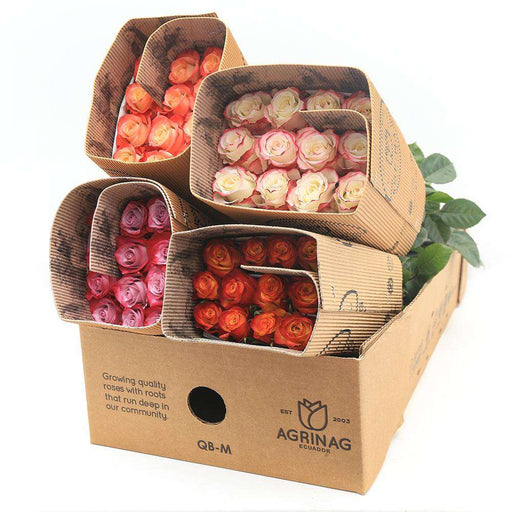 Farm Choice Box