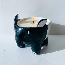 Load image into Gallery viewer, Candle Making Kit