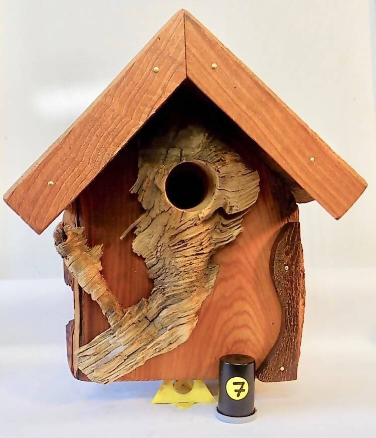 Custom Bird House #7