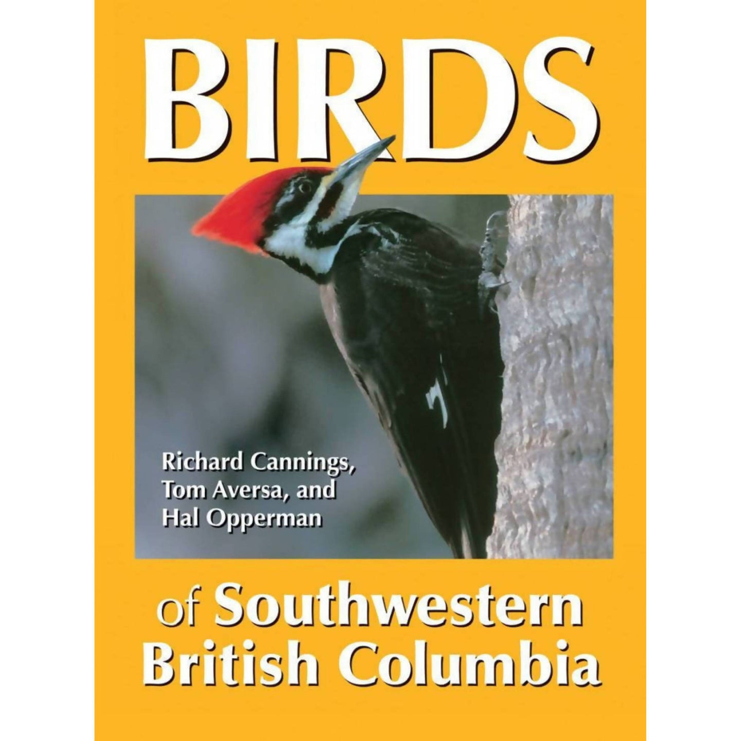 Birds of Southwestern British Columbia Field Guide