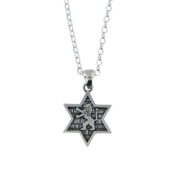 Star of David Lion of Judah Pendant Necklace Silver on Rolo Chain Bar-Mitzvah Boys, Teens