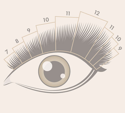 The ULTIMATE Guide to Lash Mapping: 3 FREE Downloadable Lash Maps!