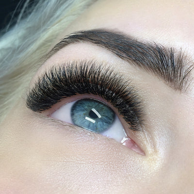 ANASTASIA NIKULINA - LONDON LASH TRAINER