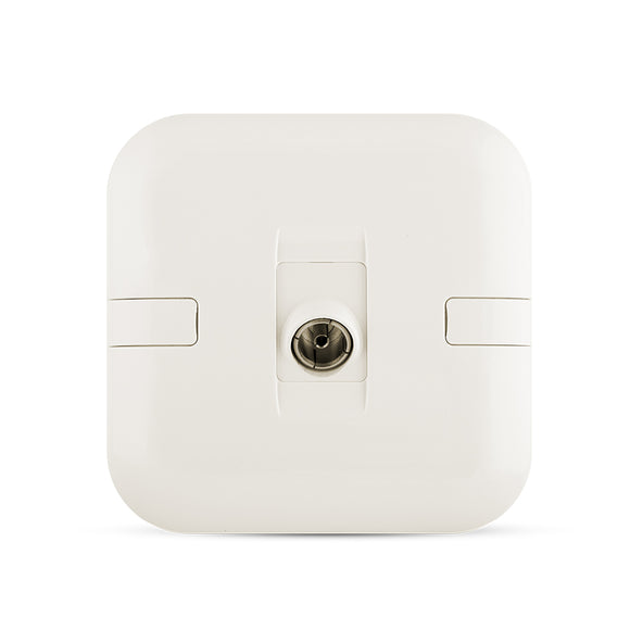 Spectra Perla Anuglar TV Socket 1Gang - Tri Spectrum على الإنترنت