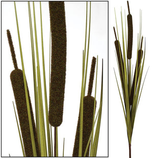 Bull Rush Bush - Green - Extra Large (Box of 6) SPECIAL
