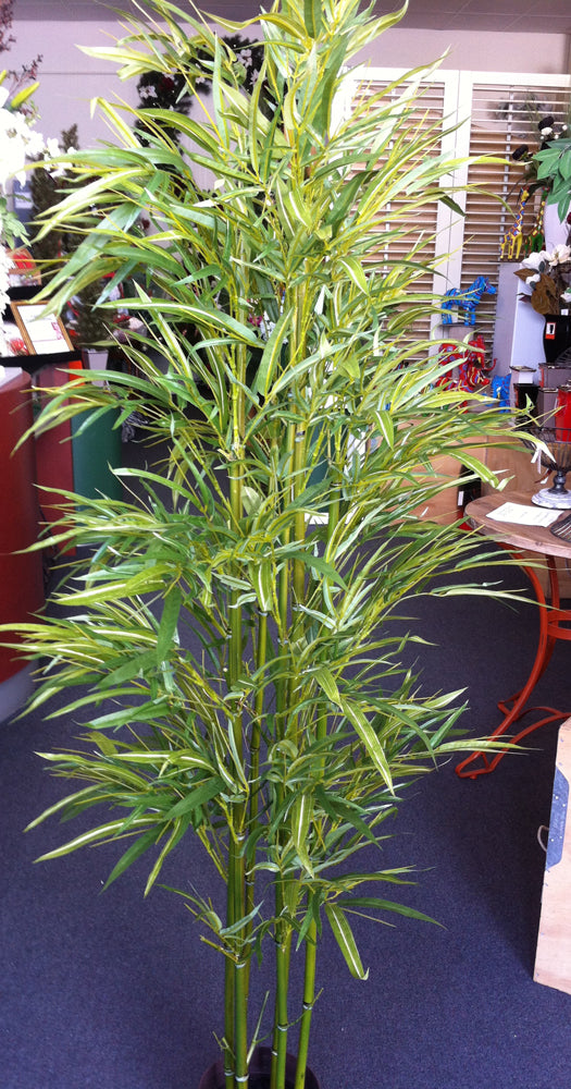 Artificial Tree - Bamboo 180cm *** EX-SHOWROOM SPECIAL ***