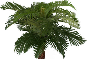 Fern - NZ Ponga Medium 120cm