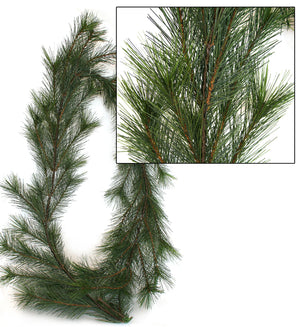 Garland - NZ Pine - Premium - Box Lot Deal (6)