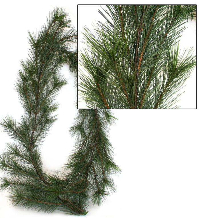 Garland - NZ Pine - Premium *** SOLD OUT ***