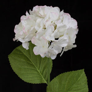 Hydrangea Flower Spray - White