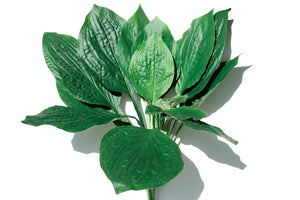 Hosta Leaves - Artificial