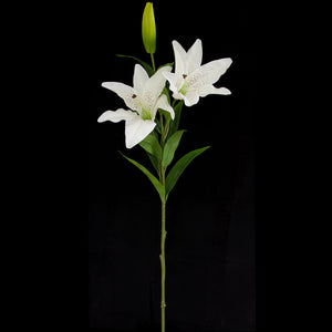 Lillium Spray - Double Head - 98cm