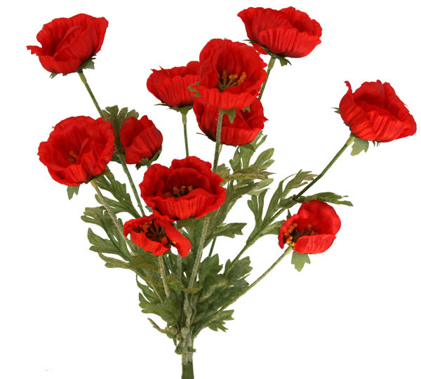 ANZAC Poppy Bush - Red - Box Lot Deal (6)