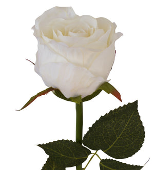 Artificial Rose - Wedding Empire - Half Bloom - White