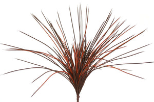 Grass - Lemongrass - Flame Burgundy - Box Lot Deal (10)