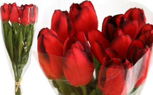 Tulip Presentation Bouquet with cello wrap - Red