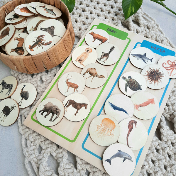animals sorting board - activity board