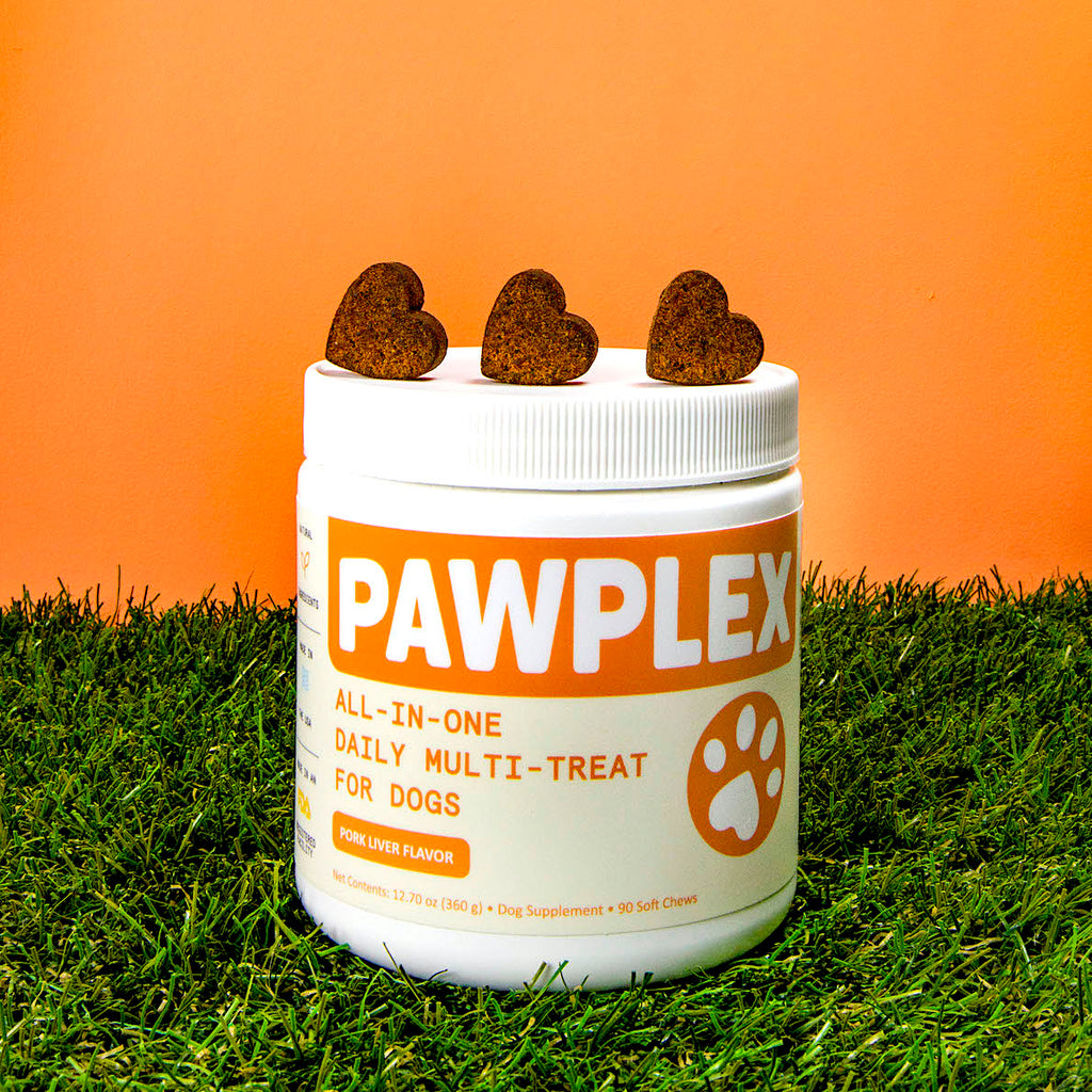 PawPlex All-in-One Multi-Treat