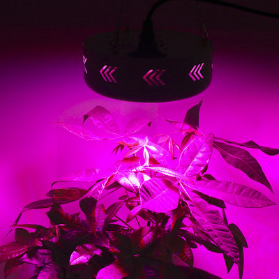 4PCS Full Spectrum UFO 150W LED Grow Light