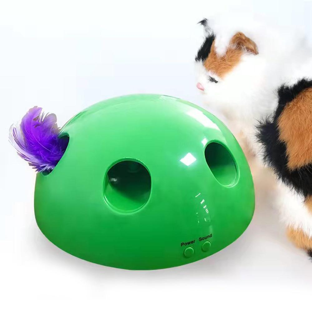 Electric Pet Cat Traning Toy