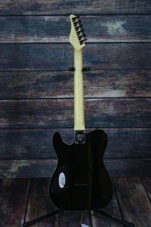 Schecter Electric Guitar Schecter Right Handed PT Electric Guitar