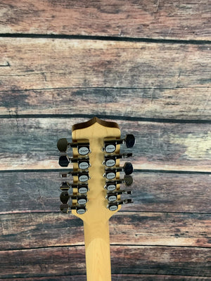Takamine Acoustic Guitar Used Takamine EG523SC-12 Korean Built 12 String Acoustic Electric with Hard Shell Case