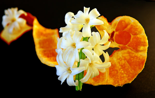 Dry Orange Peel and Fresh Orange flower together