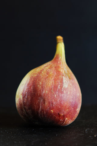 Portrait of a perfect Fig
